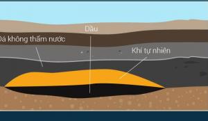 Nguồn gốc của dầu mỏ